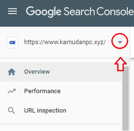 opsi add site google search console